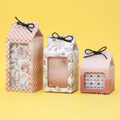 Kit Caixa Milk Nilmara
