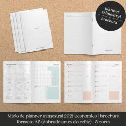 Miolo trimestral planner econômico datado brochura Nilmara Quintela