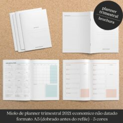 Miolo trimestral planner econômico não datado brochura Nilmara Quintela